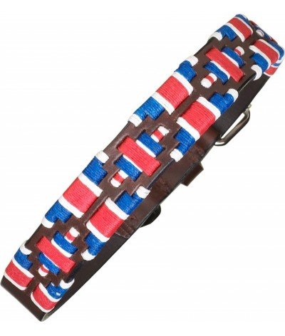 Pampeano Honden Halsband GB Limited- Edition