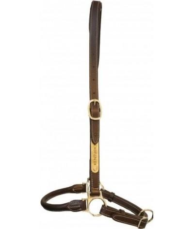Kentucky Horsewear Grooming Halster