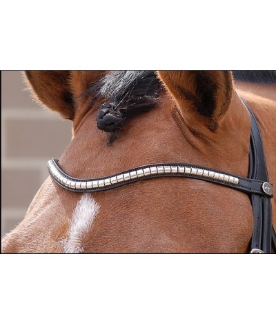 Dyon Browband Steel Clincher