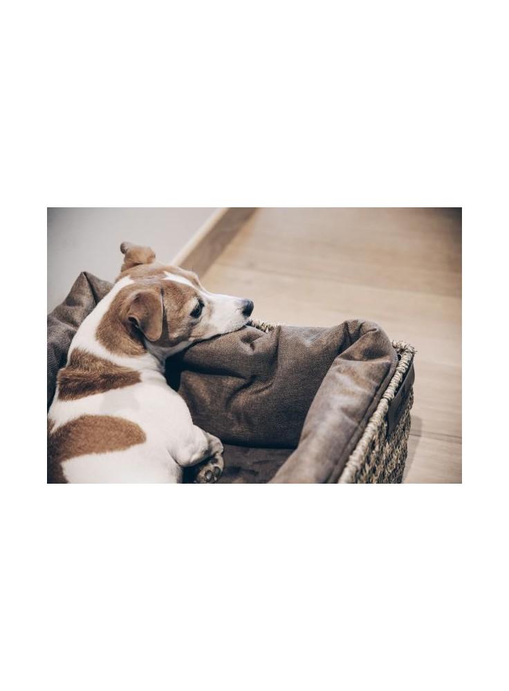 "Kentucky Dog Bed ""Basket"" Medium"