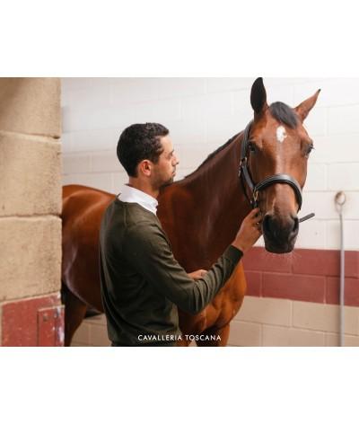 Cavallera Toscana Jaquard CT V-neck Sweater