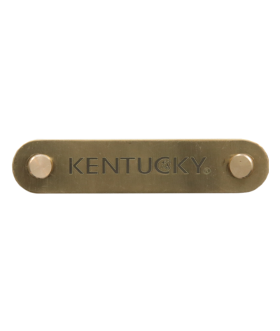 Kentucky Name Plate Logo...