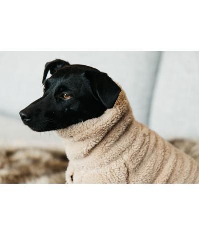 Kentucky Dogwear Dog...
