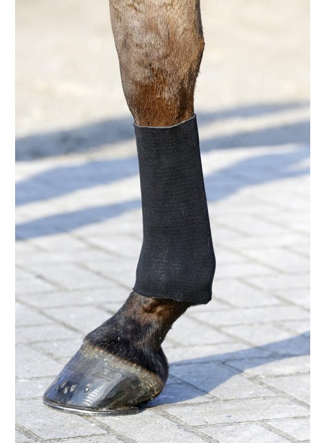 Kentucky Tendon Grip Socks