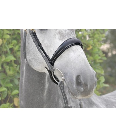 Dyon Dressage Noseband 'Dyon Collection'