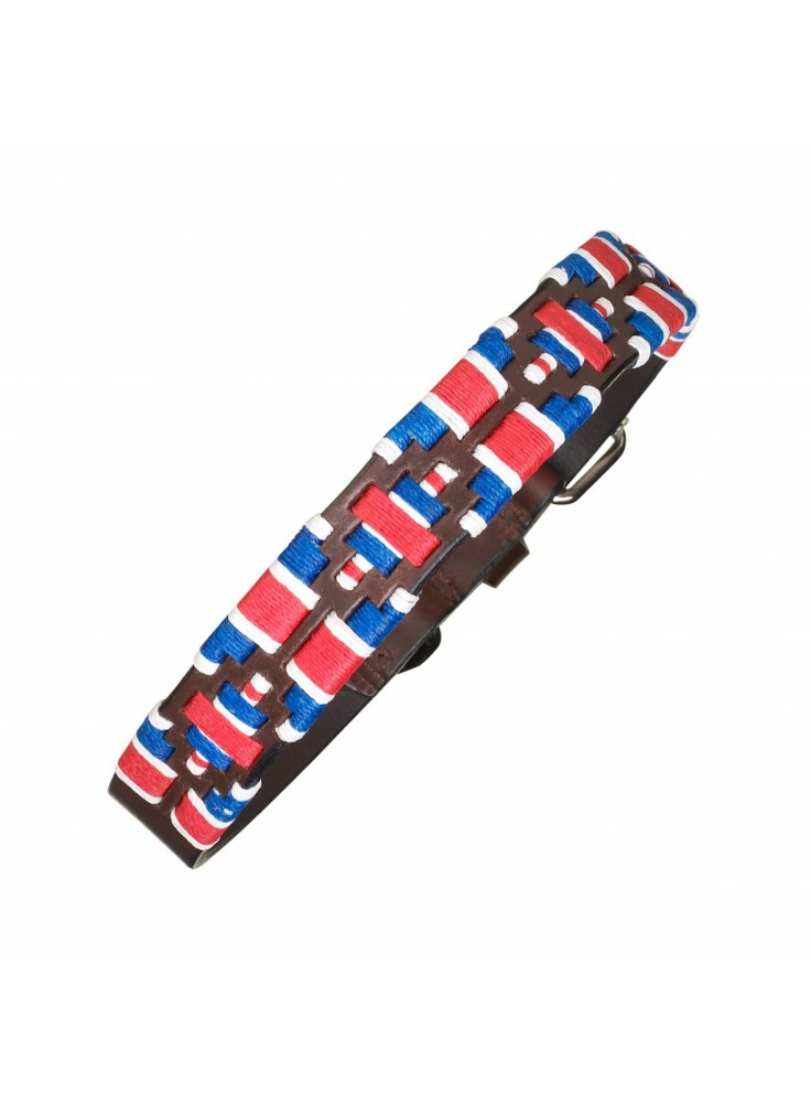 Pampeano Leather Dog Collar  GB Limited- Edition