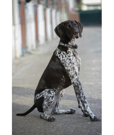 "Penelope ""Pearl"" Dog Collar..."