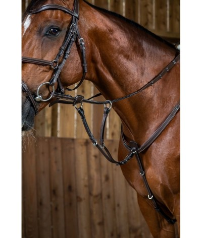 Dyon Running Martingale...