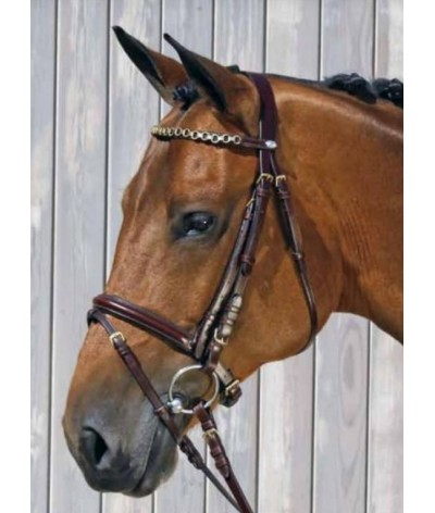 Equilook Bridle Cristobal