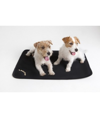 Back on Track Dog Mattress Cage Fit