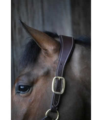 Kentucky Horsewear Anatomic Halter
