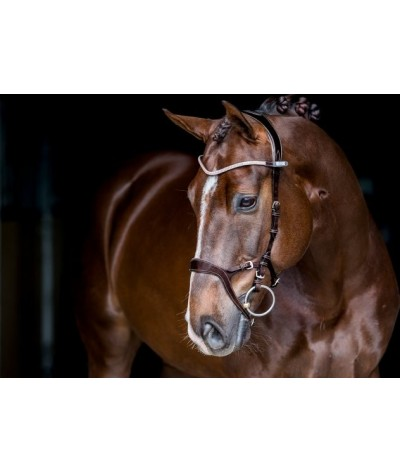 PS of Sweden Bridle Nirak