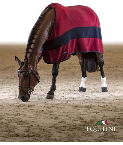 Equiline Microfleece Walking Rug Steve