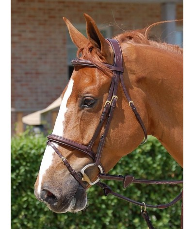 Dyon Flash Noseband Bridle