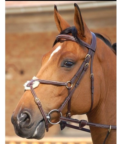 Dyon Fig.8 Noseband Bridle