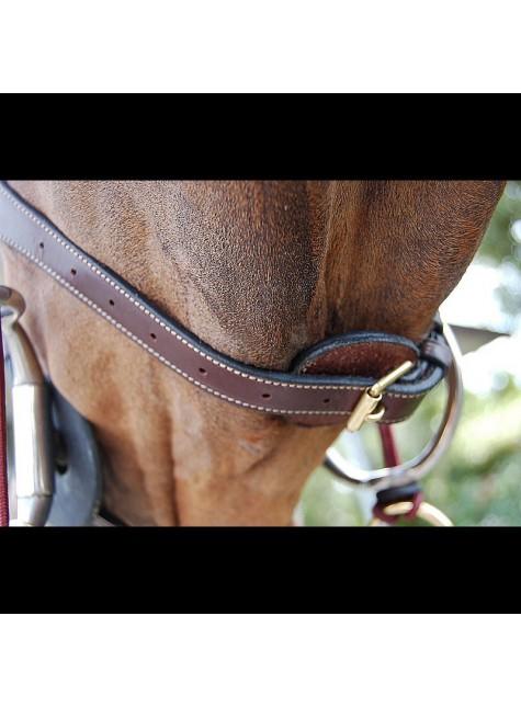 Dyon Anatomic Flash Noseband Bridle