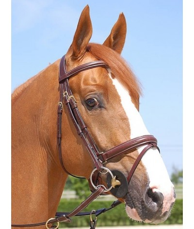 Dyon Hoofdstel Large Flash Noseband Bridle