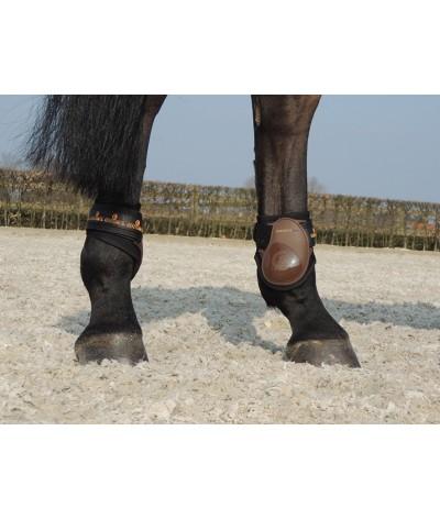 Kentucky Kogelbeschermers Young Horse