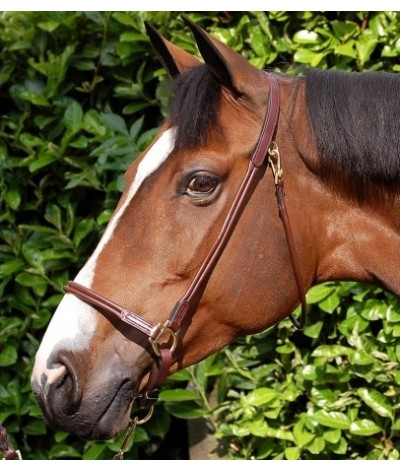 Dyon Grooming Head Collar Rolled Leather 'Dyson Collection'