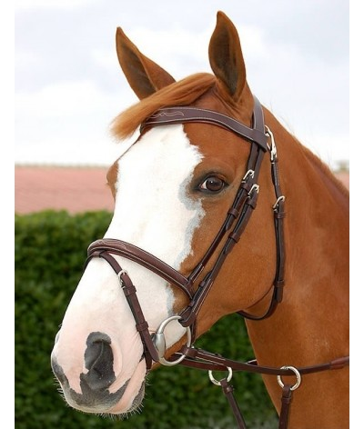 Dyon Flash Noseband Bridle 'Working Collection'