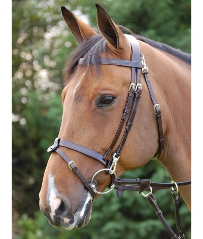 Training Bridle With Snaps 'Working Collection'