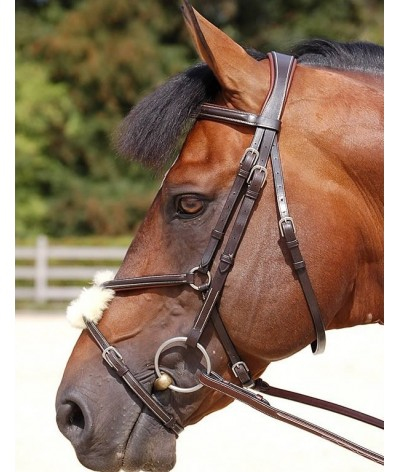 Dyon Fig 8 Noseband Bridle 'Working Collection'