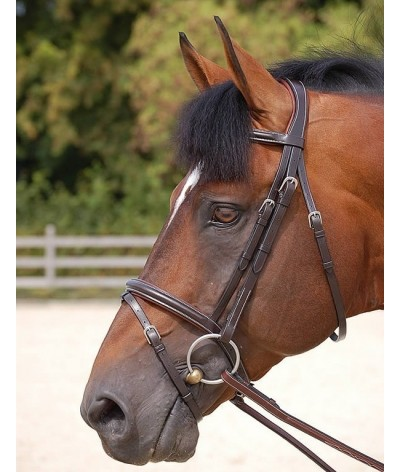 Dyon Classic Flash Noseband Bridle 'Working Collection'