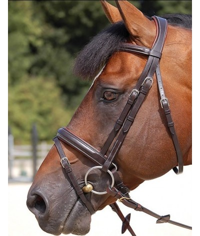 Dyon Classic Large Crank Noseband Bridle 'Working Collection'
