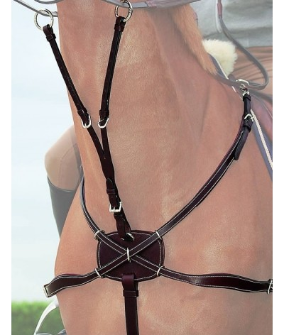 Breastplate Martingale Crossed ´Working Collection´
