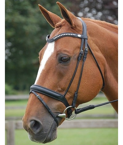 Dyon Medium Flash Noseband Bridle