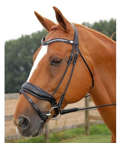 Dyon Large Crank Noseband Bridle With Flash