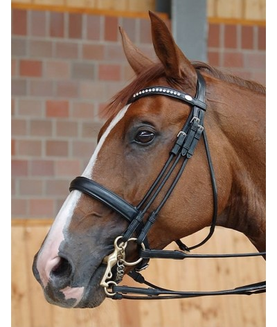 Dyon Medium Noseband Double Bridle