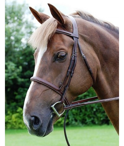 Dyon Cavesson Bridle 'Hunter Collectie'