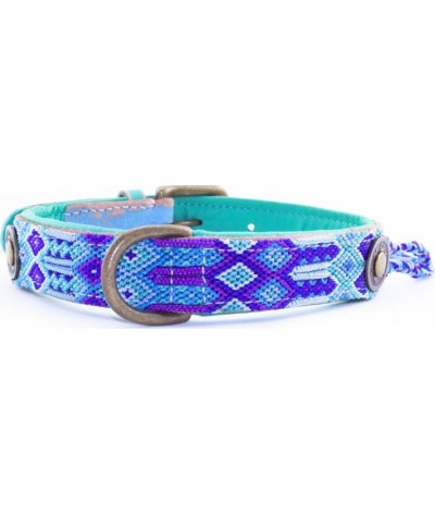 Dog With A Mission Halsband Blue 2.5 CM