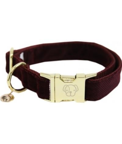 Kentucky Dog Collar Cordyroy