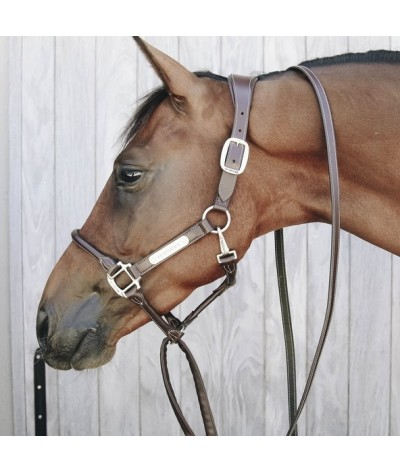 Kentucky Chain Lead Leather