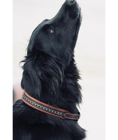 Penelope Leprevost Honden Halsband Havanna