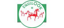 Equilook
